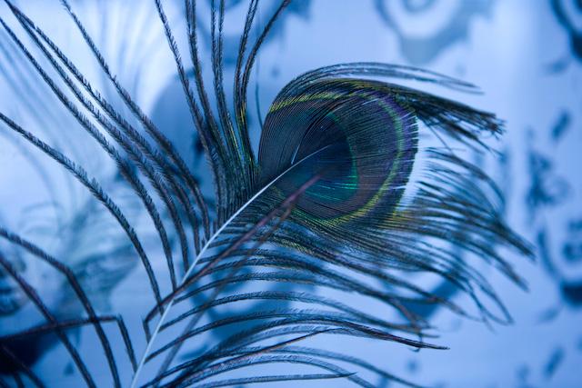 Johanna Björk: 100805: Blue