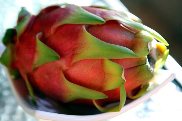 Johanna Björk: 100907: Dragonfruit