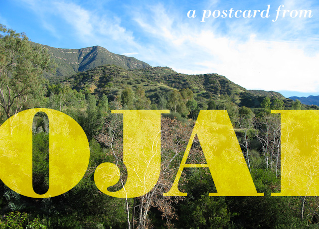 Concrete Flower: 110105: A Postcard from Ojai
